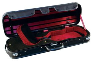 Violin case for sale